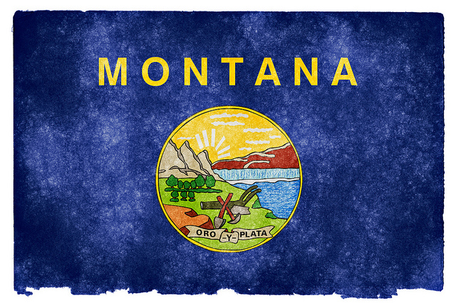 Montana_Dealer_License_Renewal
